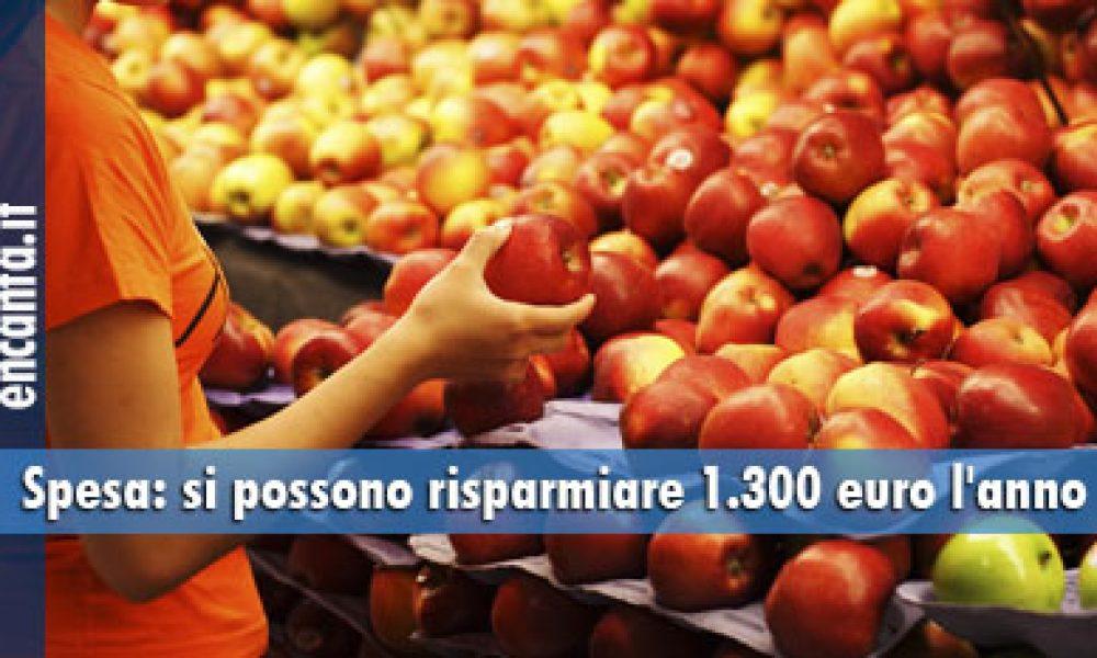 Spesa: si possono risparmiare 1.300 euro l'anno