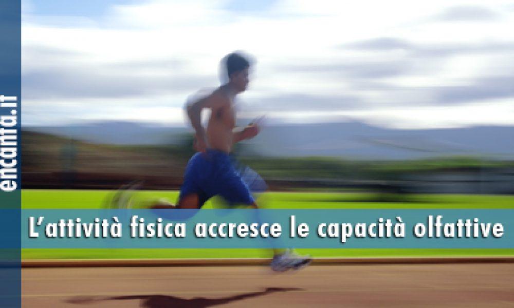 L'attività fisica accresce le capacità olfattive