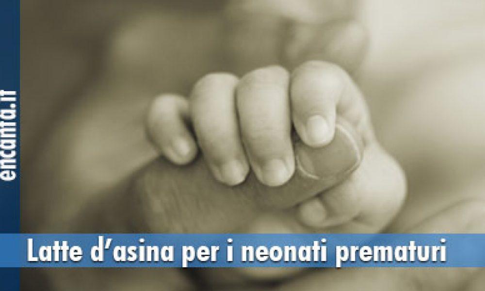 Salute neonati, latte d'asina per i neonati prematuri