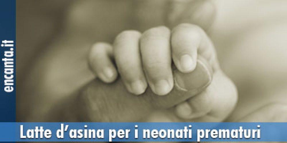 Latte d'asina per i neonati prematuri