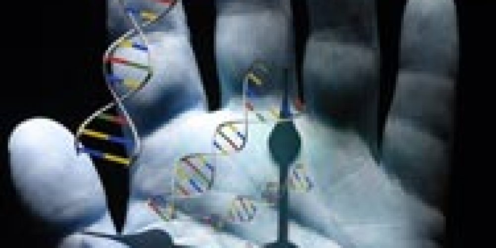 'Biovetri' per rigenerare i tessuti