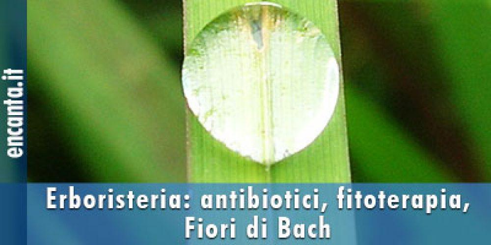 Erboristeria: antibiotici, fitoterapia, Fiori di Bach