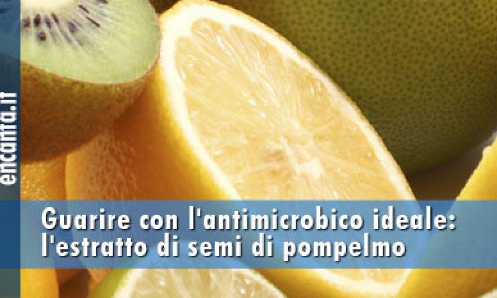 L'antimicrobico ideale: l'estratto di semi di pompelmo