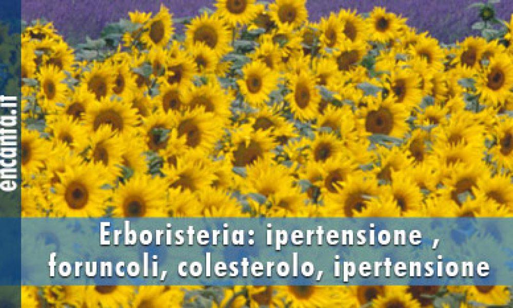 Erboristeria: ipertensione, foruncoli, colesterolo, ipertensione