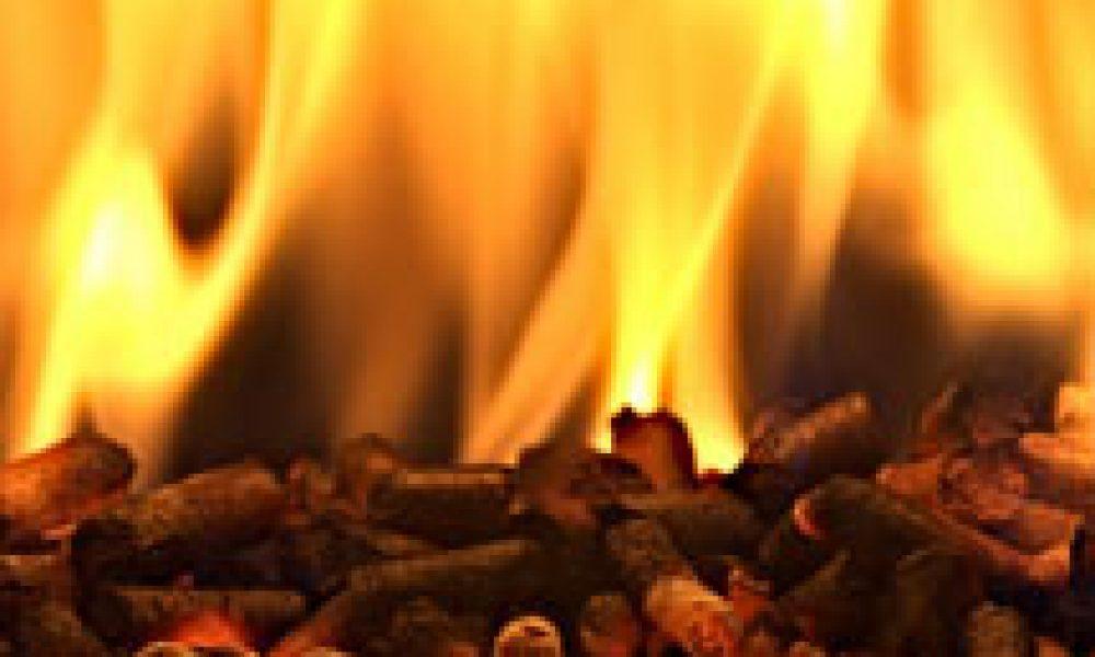 Dalle biomasse alimenti ed energia