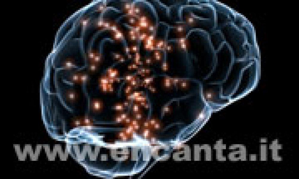 Che memoria ha quel neurone!