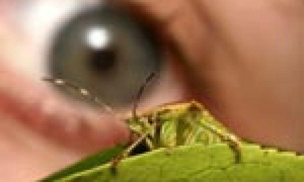 Oculistica: ecco il laser saldatessuti