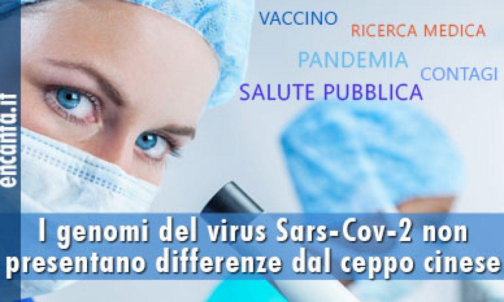 I genomi del virus Sars-Cov-2 non presentano differenze dal ceppo cinese